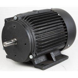 Sähkömoottori FM300S5...